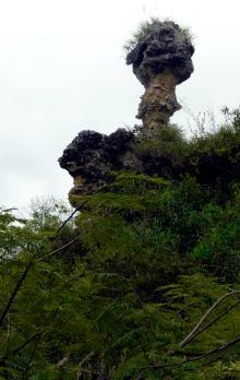 mushroom-rock-rumi-wilco-vilcabamba-lores