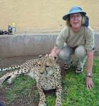 Sue and the lovely cheetah - Namibia